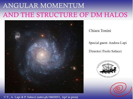 ANGULAR MOMENTUM AND THE STRUCTURE OF DM HALOS Chiara Tonini Special guest: Andrea Lapi Director: Paolo Salucci C.T., A. Lapi & P. Salucci (astro-ph/0603051,