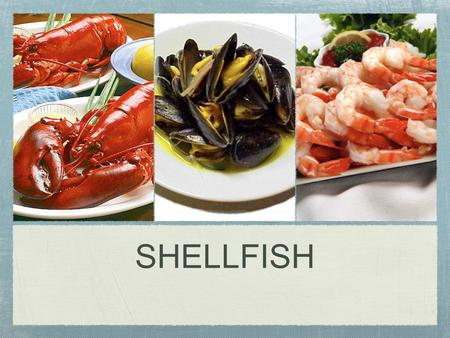 SHELLFISH. There are two classifications of shellfish: 1. Mollusks: soft sea animals that fall into three main categories: Univalves, which have a single.