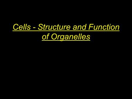Cells - Structure and Function of Organelles. Eukaryotic vs. Prokaryotic Prokaryotic organisms are single-celled bacteria that evolved early and are very.