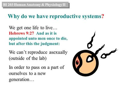 We get one life to live… Hebrews 9:27 And as it is appointed unto men once to die, but after this the judgment: We can't reproduce asexually (outside of.