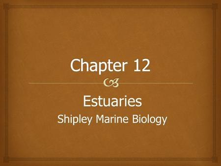 Estuaries Shipley Marine Biology