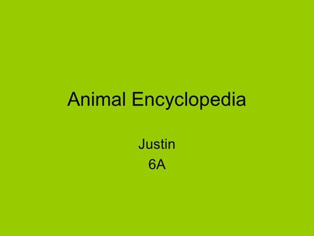 Animal Encyclopedia Justin 6A. TABLE OF CONTENTS NARWHAL ARTIC FOX FRILLED LIZARD SIFAKA WARTY NEWT LYNX AYE-AYE GELADAS OSTRICH BLACK-FOOTED FERRETBLACK-FOOTED.