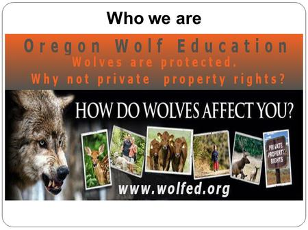 Who we are. Oregon wolf count: 77 minimum Rural Joseph.