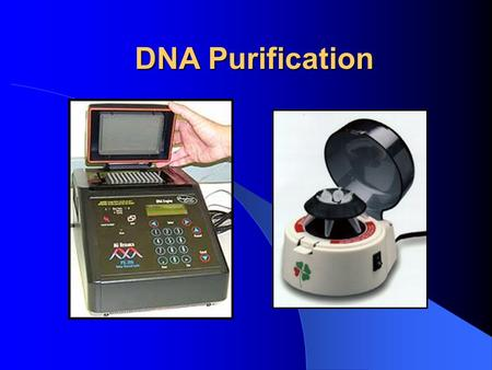 DNA Purification. Definition DNA purification is a technique that removes impurities and unused reagents from samples after enzymatic reactions, such.