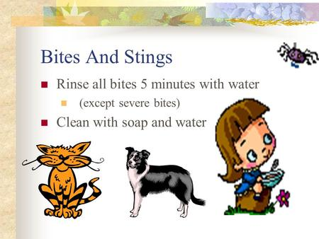 Bites And Stings Rinse all bites 5 minutes with water (except severe bites) Clean with soap and water.