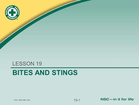 © 2011 National Safety Council BITES AND STINGS LESSON 19 19-1.