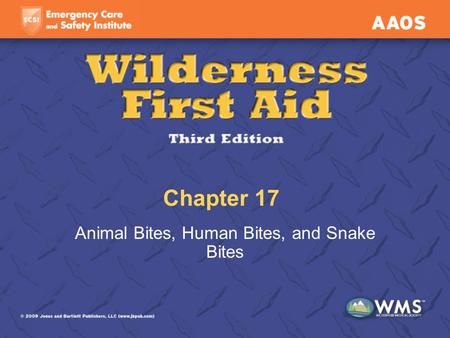 Chapter 17 Animal Bites, Human Bites, and Snake Bites.