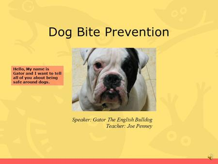 Dog Bite Prevention Speaker: Gator The English Bulldog Teacher: Joe Penney Hello, My name is Gator and I want to tell all of you about being safe around.