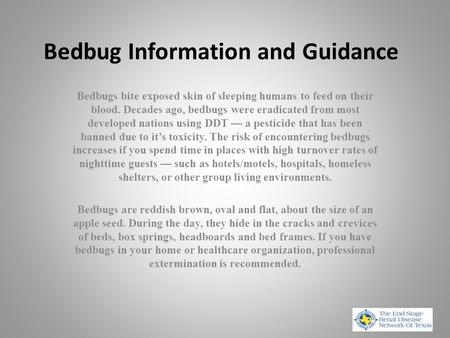 Bedbug Information and Guidance