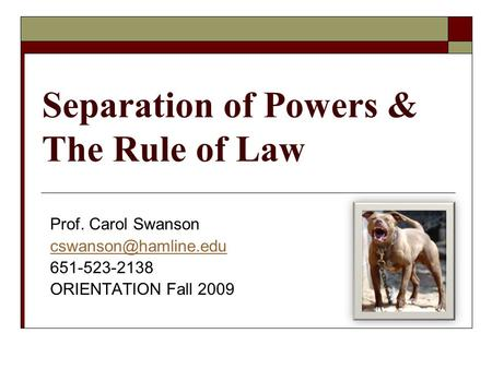 Separation of Powers & The Rule of Law Prof. Carol Swanson 651-523-2138 ORIENTATION Fall 2009.