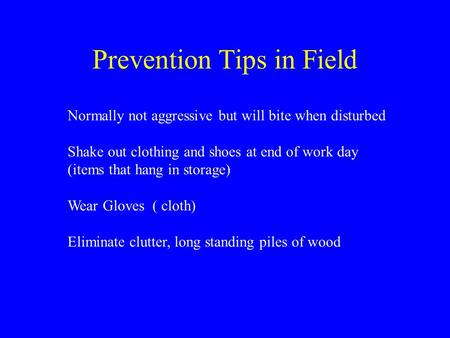 Prevention Tips in Field Normally not aggressive but will bite when disturbed Shake out clothing and shoes at end of work day (items that hang in storage)