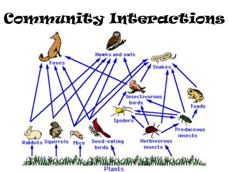 Community Interactions Community: Many species interacting in the same environment Three types of interactions: – Competition – Predation – Symbiosis.