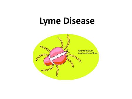 Lyme Disease. In 2011, 96% of Lyme disease cases were reported from 13 states. Pennsylvania was one of these 13. Nearby states were also included: Maryland,
