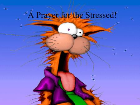 A Prayer for the Stressed! Grant me the serenity to accept the things I cannot change, the courage to change the things I cannot accept, and the wisdom.