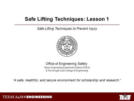 Safe Lifting Techniques to Prevent Injury Office of Engineering Safety Texas Engineering Experiment Station (TEES) & The Dwight Look College of Engineering.