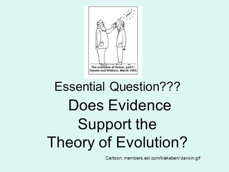 Essential Question??? Does Evidence Support the Theory of Evolution? Cartoon: members.aol.com/kiekeben/ darwin.gif.