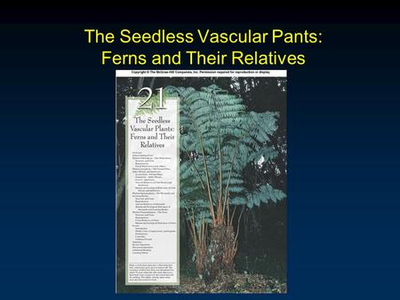 The Seedless Vascular Pants: Ferns and Their Relatives