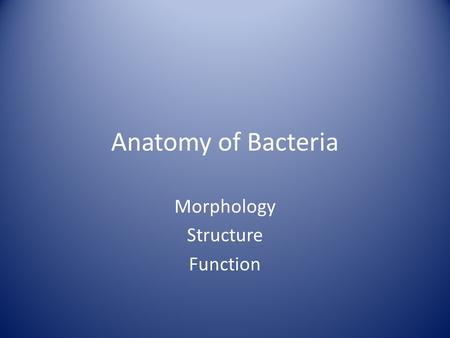 Anatomy of Bacteria Morphology Structure Function.