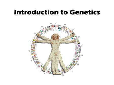Introduction to Genetics. Fact or Fiction? Man is the highest of the animals; therefore, he has the most chromosomes. FALSE.