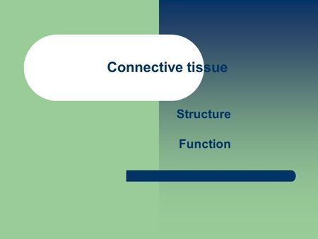 Connective tissue Structure Function.
