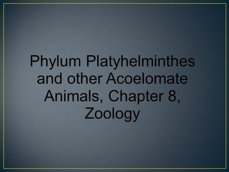 Phylum Platyhelminthes and other Acoelomate Animals, Chapter 8, Zoology.