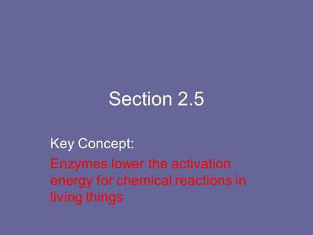 Section 2.5 Key Concept: Enzymes lower the activation energy for chemical reactions in living things.