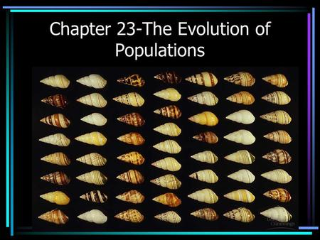 Chapter 23-The Evolution of Populations. Populations Evolve Individuals do not. A population is defined as a group of individuals belonging to the same.