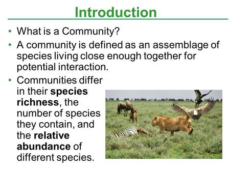 What is a Community? A community is defined as an assemblage of species living close enough together for potential interaction. Communities differ in their.