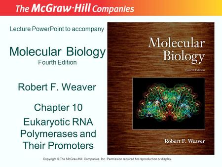 Molecular Biology Fourth Edition Chapter 10 Eukaryotic RNA Polymerases and Their Promoters Lecture PowerPoint to accompany Robert F. Weaver Copyright ©