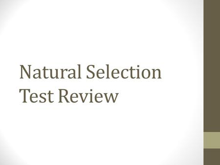 Natural Selection Test Review. Question #1 During his visit to the Galapagos Islands, Charles Darwin discovered 14 distinct species of finches. These.