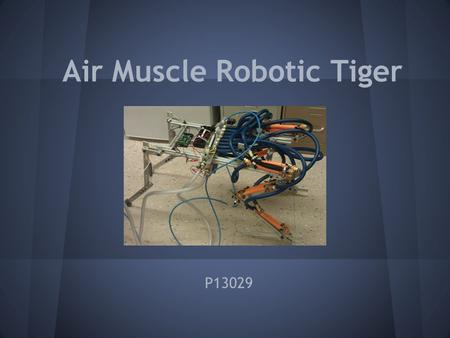 Air Muscle Robotic Tiger P13029. Presentation Agenda Specs and Customer Needs Concept Summary Design Summary System Testing Results Successes and Failures.