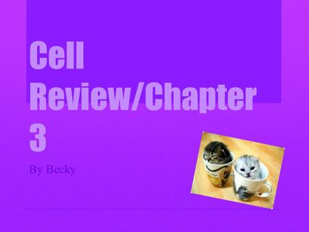 Cell Review/Chapter 3 By Becky. The Cell Cytology is the study of the structure and functions of cells. The cell was first discovered by Robert Hooke.