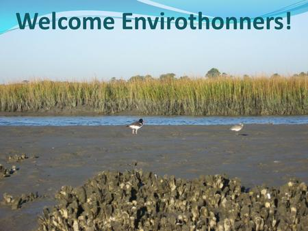 Welcome Envirothonners!. Estuaries What is an estuary? Merriam-Webster defines: a water passage where the tide meets a river current or an arm of the.
