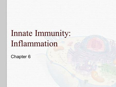 Innate Immunity: Inflammation Chapter 6. Immunity  First line of defense Innate resistance – physical (skin/epithelial layer, GI & Resp Tract),, mechanical.