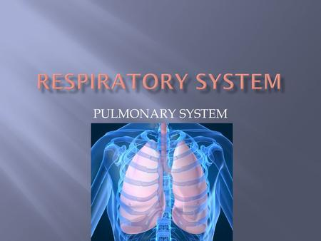 PULMONARY SYSTEM. 1. Making breathing easier 2. Preventing transmission of infection (airborne, droplet)