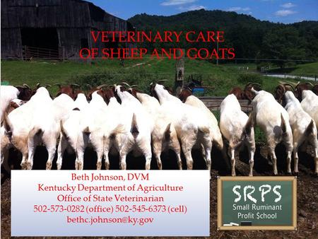 VETERINARY CARE OF SHEEP <strong>AND</strong> GOATS