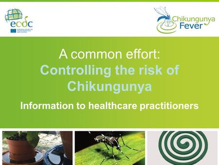 Controlling the risk of Chikungunya
