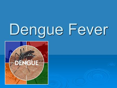 Dengue Fever.  Dengue virus  Most prevalent vector- borne viral illness in the world  Main mosquito vector is Aedes aegypti,  Year round transmission.