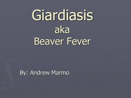 Giardiasis aka Beaver Fever By: Andrew Marmo. Sources ► The MERK Manual ► Google Images ►  /PMH0001333.