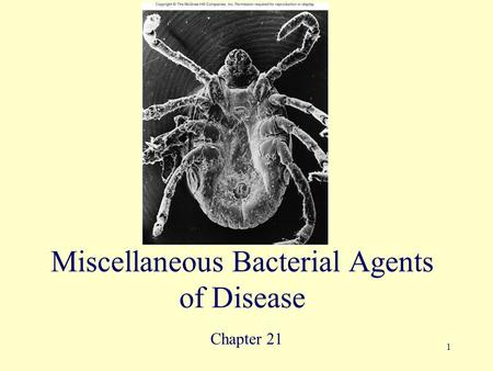 Miscellaneous Bacterial Agents of Disease