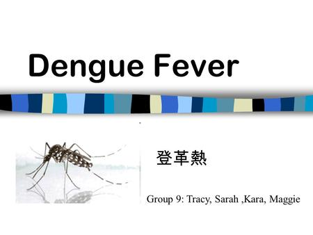 Dengue Fever Group 9: Tracy, Sarah,Kara, Maggie 登革熱.