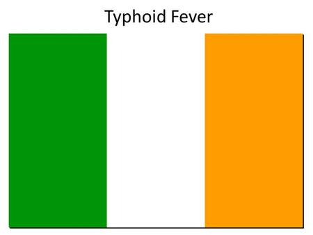 Typhoid Fever. The Irish and the English Originally Ireland existed as a country in its own right with its own language. The vast majority.