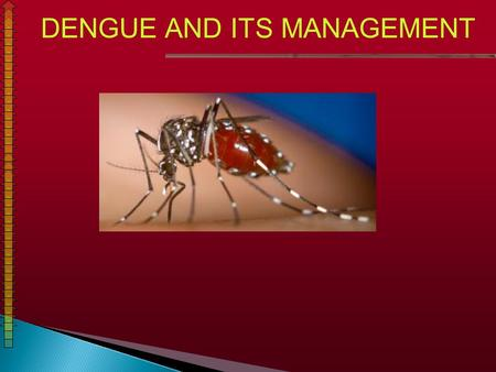 DENGUE AND ITS MANAGEMENT. COUNTRIES / AREAS AT RISK OF DENGUE TRANSMISSION.