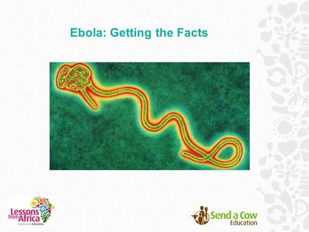 Ebola: Getting the Facts. What do you know about Ebola?