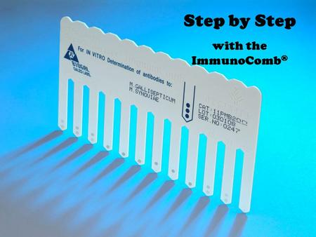 Step by Step with the ImmunoComb®.