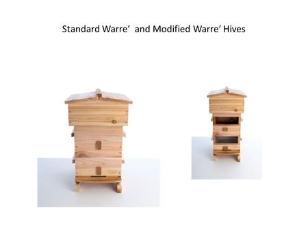 Standard Warre′ and Modified Warre′ Hives