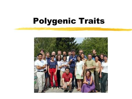 Polygenic Traits. Definition zSome traits are determined by the combined effect of two or more pairs of alleles. These traits are called polygenic traits.