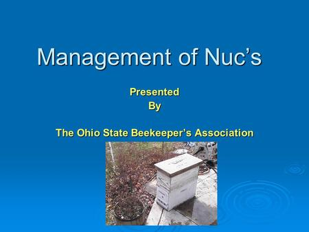 Management of Nuc's PresentedBy The Ohio State Beekeeper's Association.
