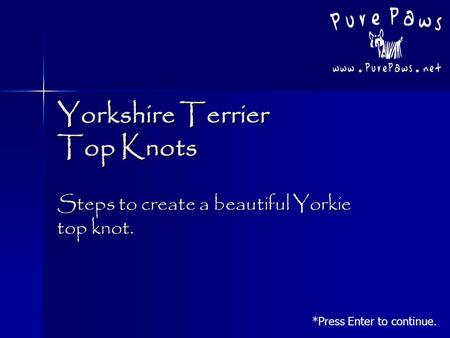 Yorkshire Terrier Top Knots Steps to create a beautiful Yorkie top knot. *Press Enter to continue.