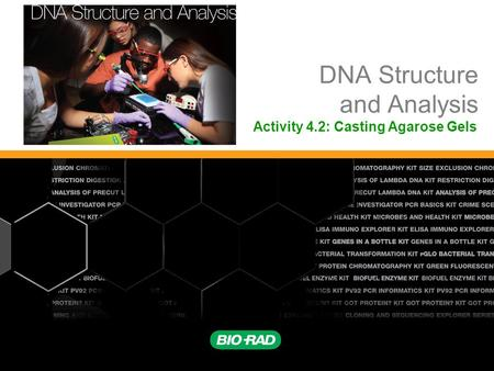 DNA Structure and Analysis Activity 4.2: Casting Agarose Gels.